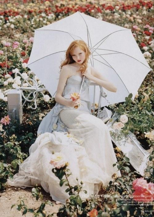 花,フラワー,写真,画像,まとめ007