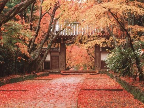 写真,日本,Japan,素敵,美しい,画像,まとめ009