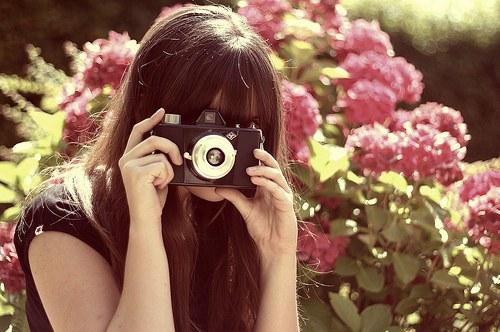 花,フラワー,写真,画像,まとめ010