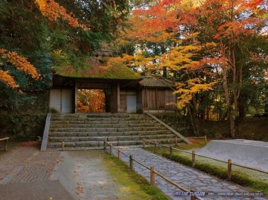 写真,日本,Japan,素敵,美しい,画像,まとめ014