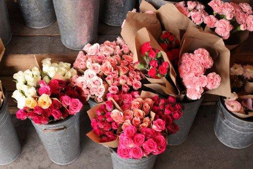 花,フラワー,写真,画像,まとめ017