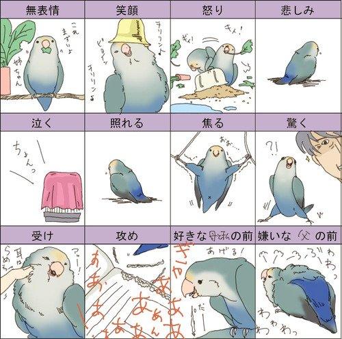 キャラクター,表情,一覧,画像,まとめ019