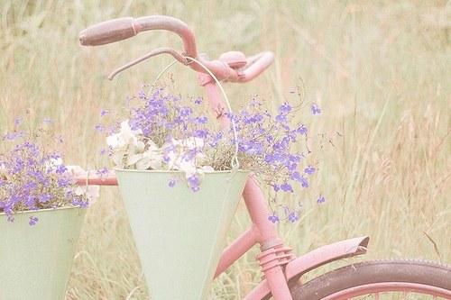 花,フラワー,写真,画像,まとめ025