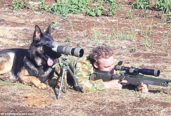 軍人,動物,ほのぼの,画像,まとめ028