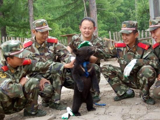 軍人,動物,ほのぼの,画像,まとめ032