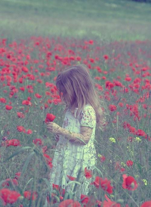 花,フラワー,写真,画像,まとめ032