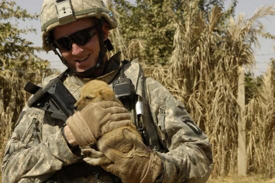 軍人,動物,ほのぼの,画像,まとめ048