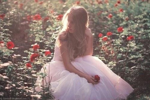 花,フラワー,写真,画像,まとめ051