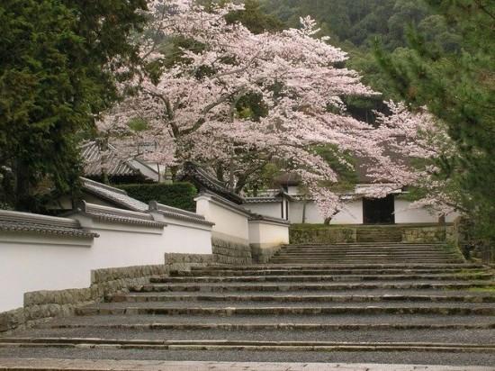 写真,日本,Japan,素敵,美しい,画像,まとめ053