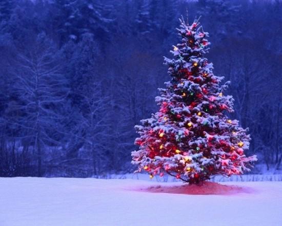 クリスマス,Christmas,ロマンチック,画像,まとめ069