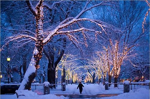 クリスマス,Christmas,ロマンチック,画像,まとめ070