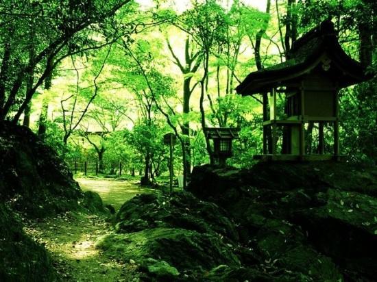 写真,日本,Japan,素敵,美しい,画像,まとめ076