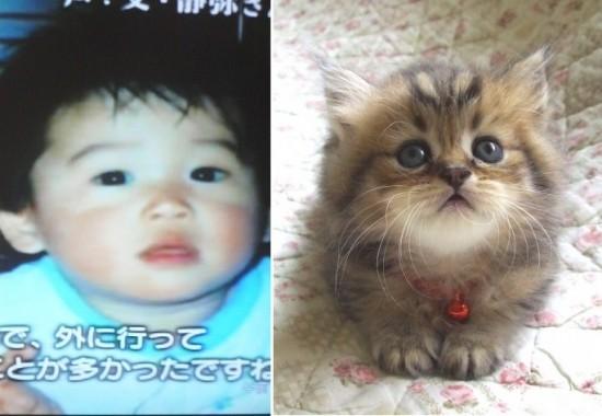 内田篤人,おもしろ,コラ,パロ,画像,ひどすぎる050