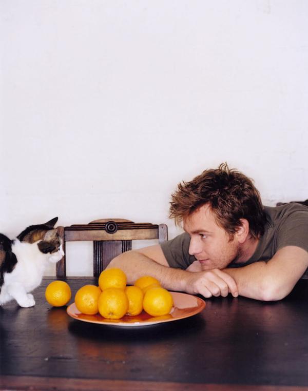 ネコ,イケメン,猫,画像,まとめ005