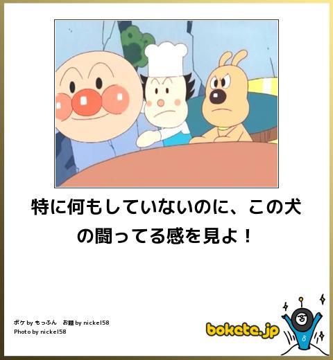 爆笑,アンパンマン,bokete,画像,まとめ059