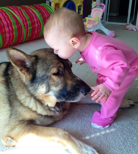 子供,大好き,癒される,子守犬,画像,まとめ002