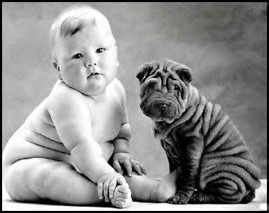 子供,大好き,癒される,子守犬,画像,まとめ009