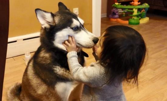 犬,こども,癒し,画像,まとめ045