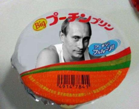 プーチン大統領,おもしろ,コラ,画像,まとめ018