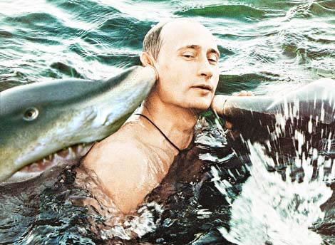 プーチン大統領,おもしろ,コラ,画像,まとめ020
