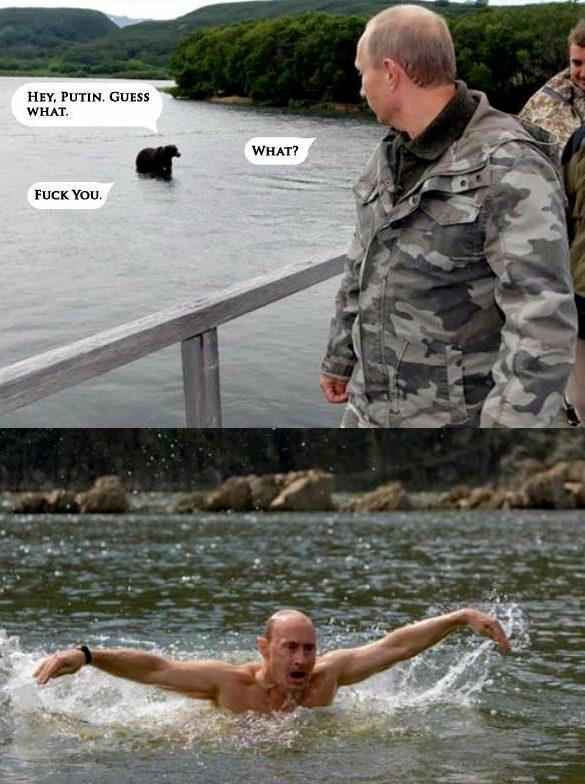 プーチン大統領,おもしろ,コラ,画像,まとめ032