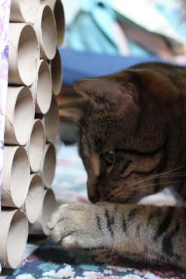 猫,自作,家具,画像,まとめ001