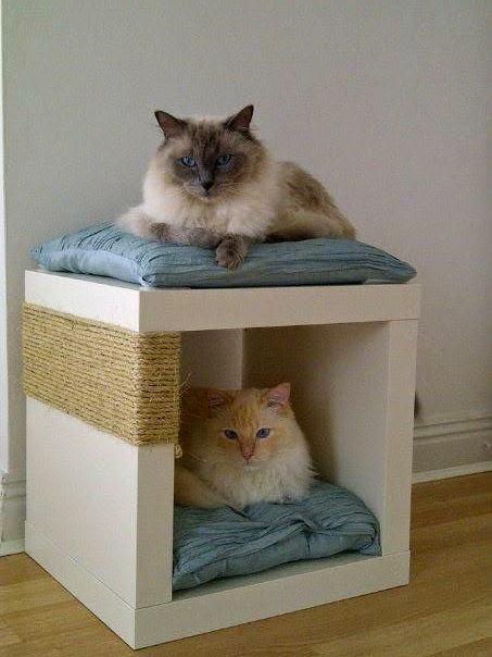 猫,自作,家具,画像,まとめ006