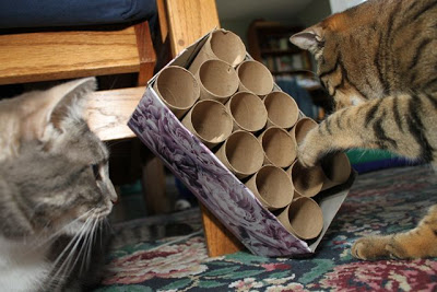 猫,自作,家具,画像,まとめ012