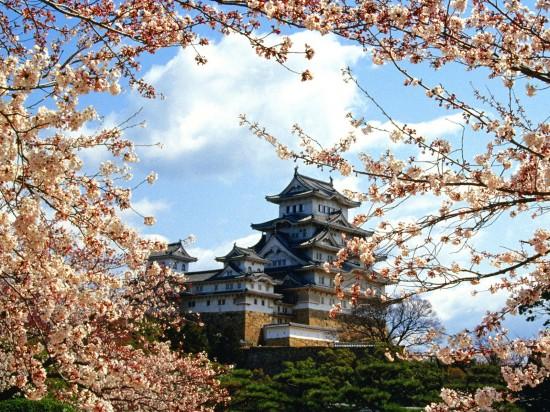 日本,美しさ,和,画像,まとめ036