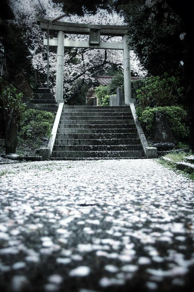 日本,美しさ,和,画像,まとめ038