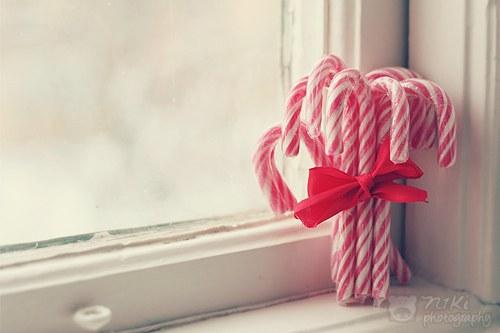 ロマンチック,クリスマス,画像,まとめ042