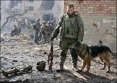軍人,動物,ほっこり,画像,まとめ033
