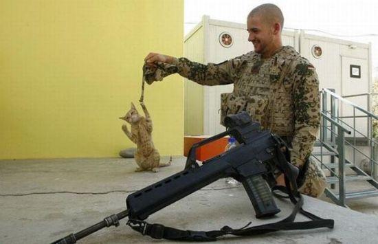 軍人,動物,ほっこり,画像,まとめ037