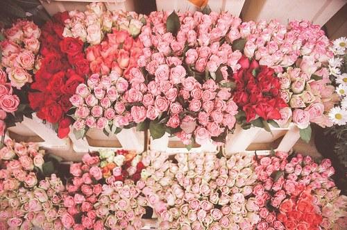 センス,オシャレ,フラワー,花,画像,まとめ054