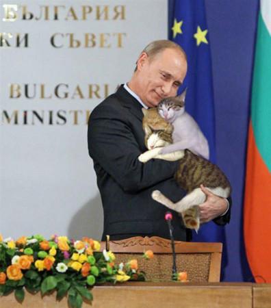 プーチン大統領,クソコラ,画像,まとめ037
