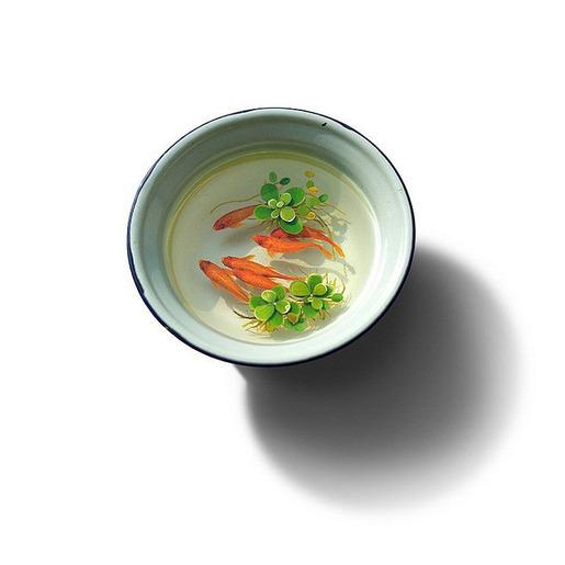 金魚アート,画像,まとめ019