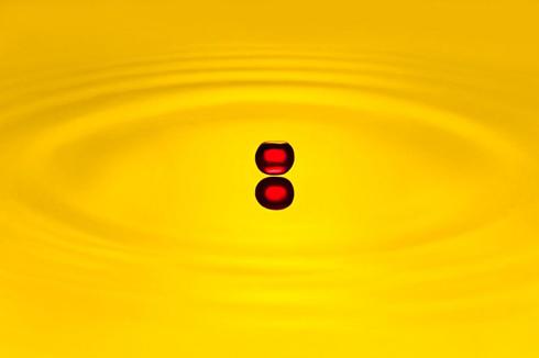 美しすぎる,水滴,アート,画像,まとめ047