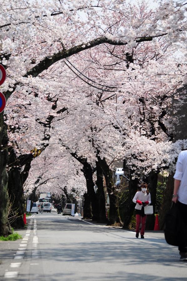オシャレ,神戸,町並み,画像,まとめ001