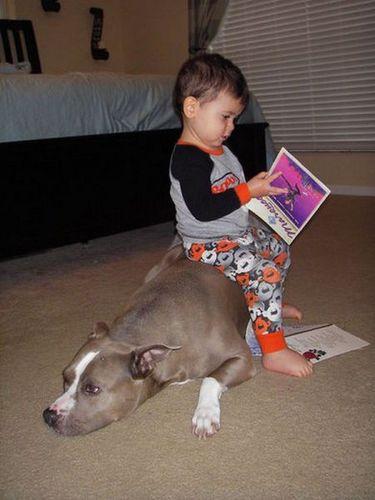 動物,赤ちゃん,ほっこり,画像,まとめ013