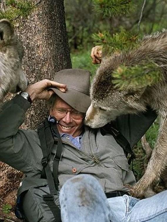 オオカミ,画像,まとめ019