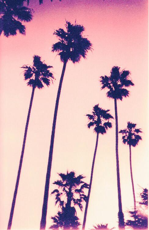 夏,オシャレ,海,画像,イラスト,貼っていく020