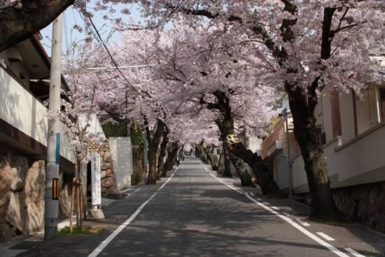 オシャレ,神戸,町並み,画像,まとめ032