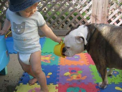動物,赤ちゃん,ほっこり,画像,まとめ036