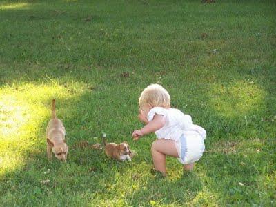 動物,赤ちゃん,ほっこり,画像,まとめ037