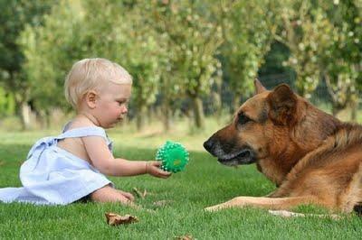 動物,赤ちゃん,ほっこり,画像,まとめ061
