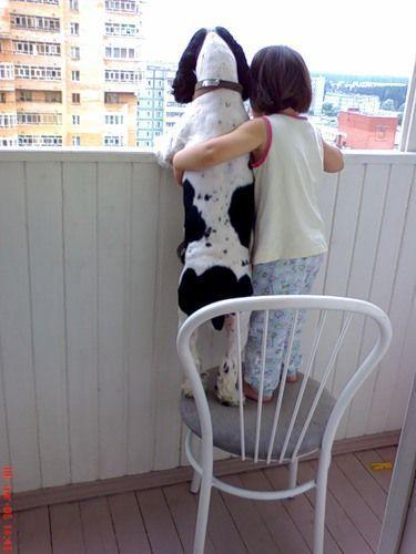 動物,赤ちゃん,ほっこり,画像,まとめ077