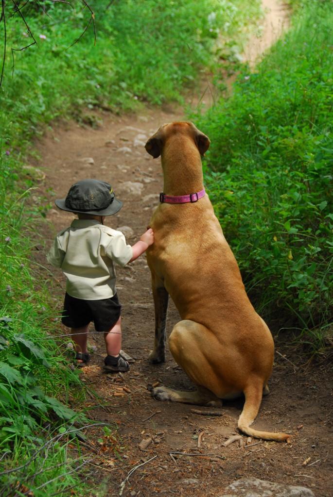 子供,大好き,動物,画像,まとめ001