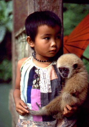 子供,大好き,動物,画像,まとめ005