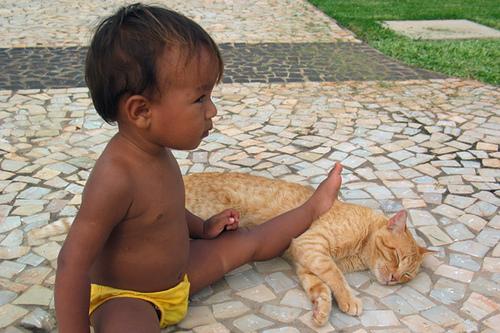 子供,大好き,動物,画像,まとめ006