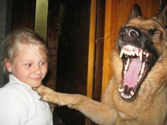 子供,大好き,動物,画像,まとめ018